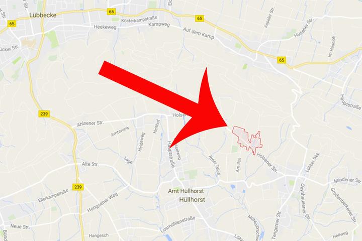 Im Ortsteil Holsen wurde der Rosellasittich entdeckt.