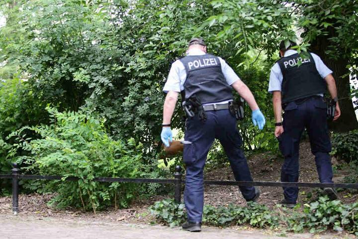 Strauch für Strauch wurde von den Beamten nach geheimen Drogendepots abgesucht.