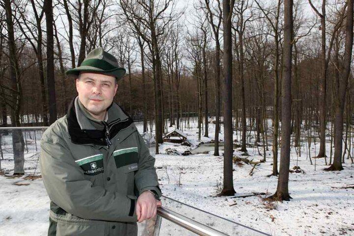 Auch beim Staatsbetrieb Sachsenforst werden in den kommenden Jahren Dutzend Stellen frei, weil Forstbedienstete in den Ruhestand gehen.