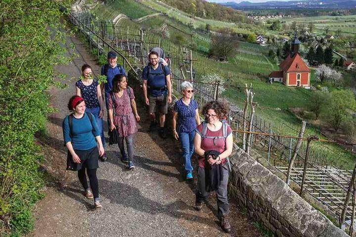 Pure Idylle! Auf dem Dichter-Musiker-Maler-Weg genießen Wandergesellen einen traumhaften Ausblick über die Elbhänge.