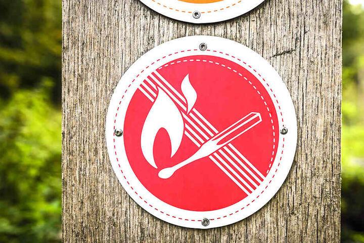 Kaum ist März, beginnt die Waldbrandsaison im Freistaat.