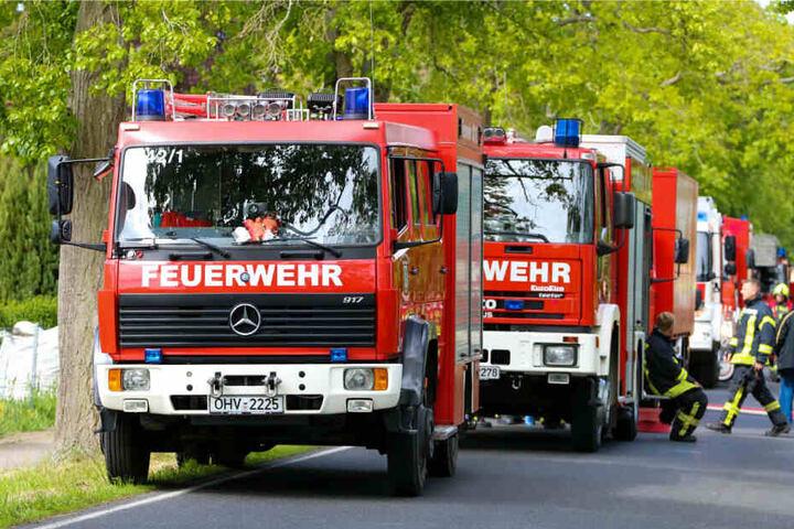 Mehrere Fahrzeuge der Feuerwehr stehen am Einsatzort.