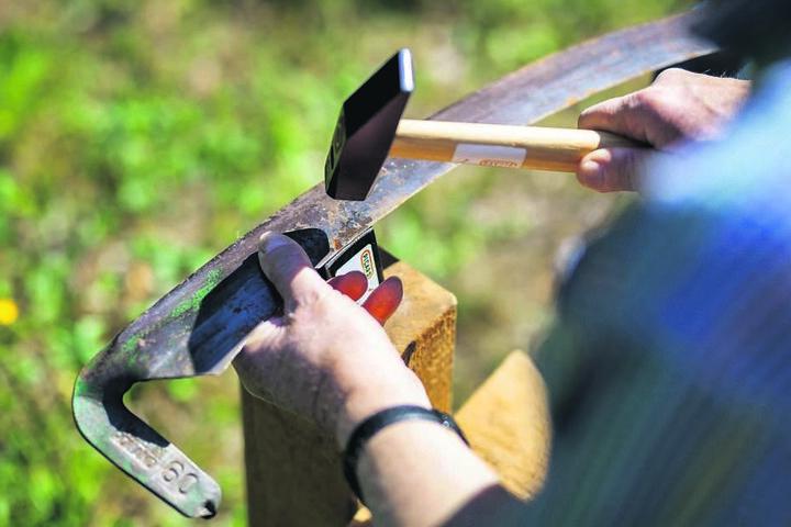 Dengeln vor Saisonbeginn: Dabei wird das Sensenblatt mit dem Hammer  bearbeitet.