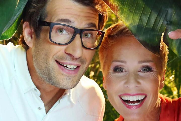 Sonja Zietlow und Daniel Hartwich löchern die Dschungel-Promis heute Abend auf RTL.