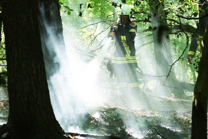 Bereits am Vortag musste die Feuerwehr hier wegen eines Brandes anrücken.