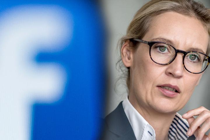 Die illegalen Parteispenden gingen für Facebook-Likes drauf. (Symbolbild/Fotomontage)