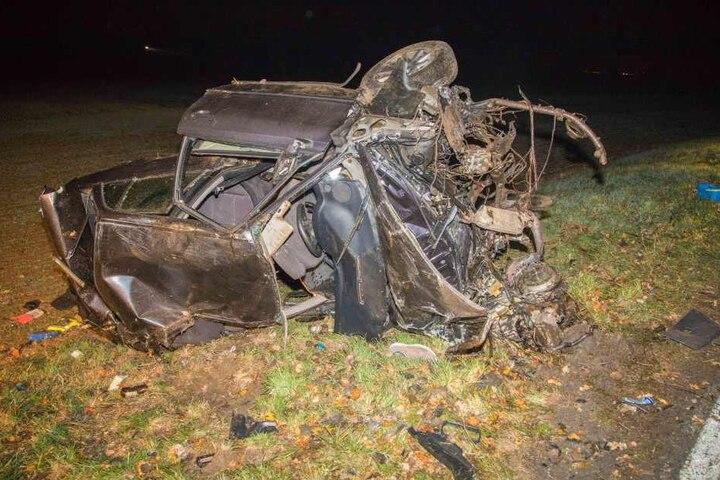 Ein Hund starb bei dem Unfall, der Audifahrer wurde schwer verletzt.