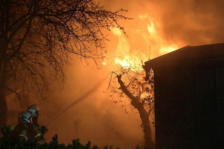 Meterhoch loderten die Flammen in der Dresdner Laube