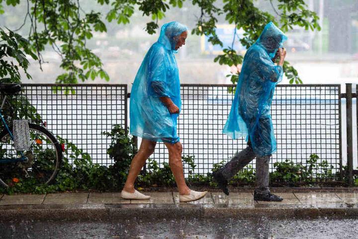 Eine Frau und ein Mann laufen in blauen Regencapes durch den Regen.