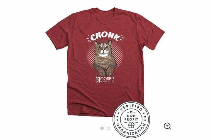 Natürlich hat Mr. B mittlerweile seine eigene T-Shirt-Kollektion. Der Kater ist ein Profi, wenn es um seine Vermarktung geht...