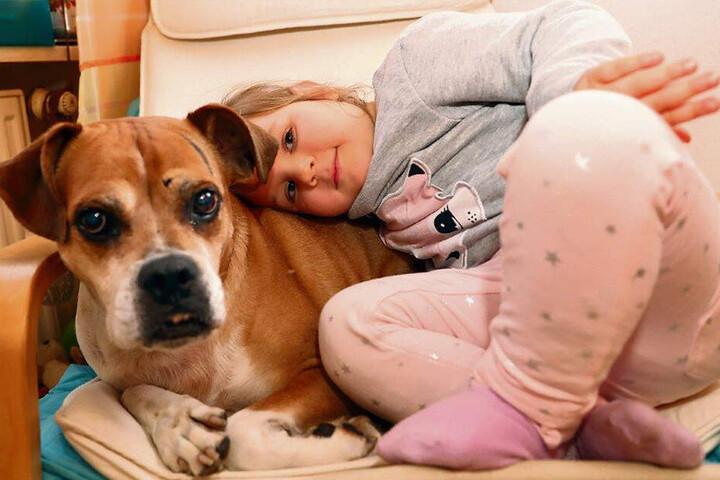 Sie ist die liebste Freundin auf vier Beinen: Seit drei Jahren wohnt Mischlingshündin Lady (11) bei der Mini-Familie - ein spanischer Straßenhund.