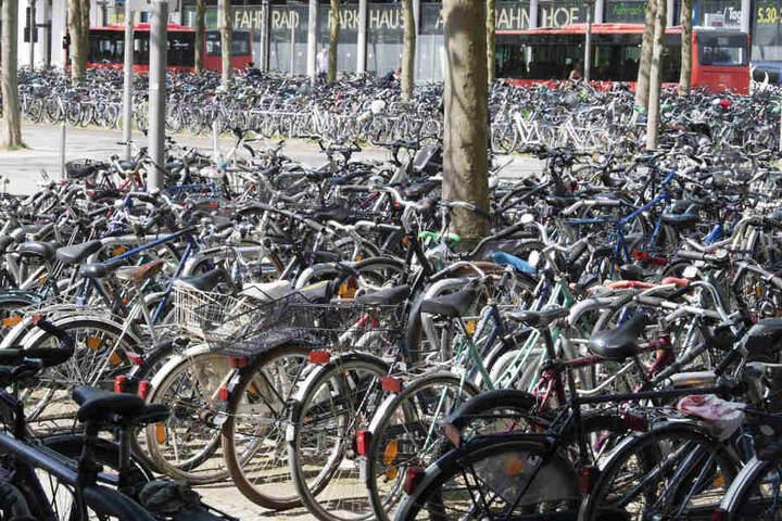 Nur sechs Fahrräder fanden keinen neuen Besitzer. (Symbolbild)