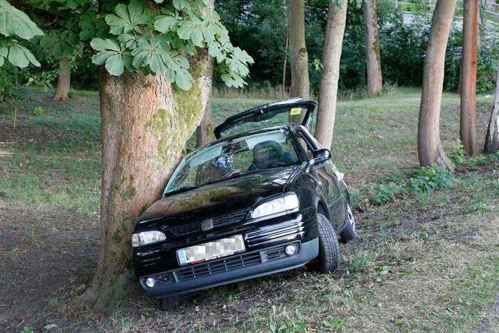 Aus dieser Perspektive sieht man, der Seat wurde seitlich an den Baum geschleudert.