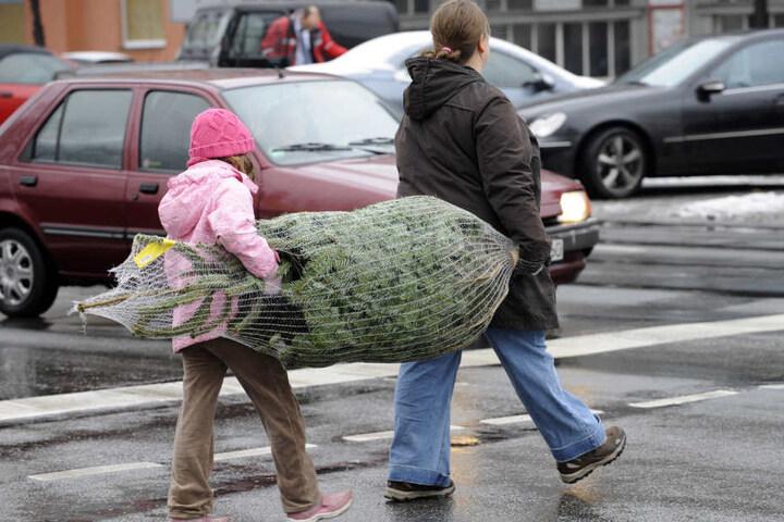 Mini-Weihnachtsbäume sind schon ab 3 Euro zu haben. Nach oben sind den Preisen keine Grenzen gesetzt. Ein 5-Meter-Baum schlägt schon mal mit rund 350 Euro zu Buche.