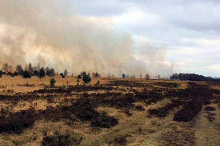 Insgesamt brannte eine Fläche von 20 Hektar.