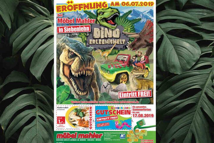 Dinos Fallen In Sachsischem Mobelhaus Ein Tag24