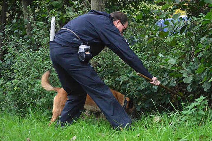 Ein Spürhund entdeckte die Leiche des Rentners.