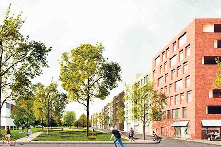 Die ersten Wohnungen sollen 2020 fertig sein.