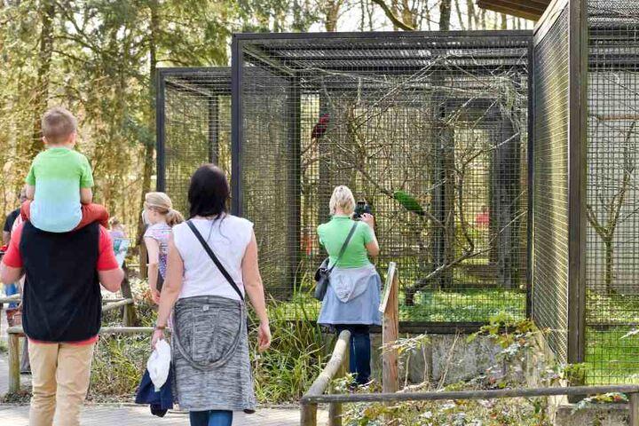 Der Chemnitzer Tierpark kämpft mit sinkenden Besucherzahlen, ist wenig  attraktiv. Hier die Papageienanlage.