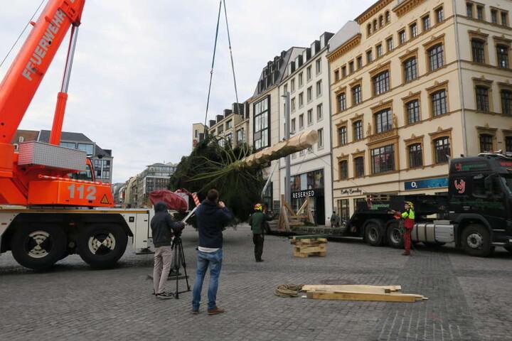 Neben einem Forstunternehmen unterstützten die Branddirektion Leipzig sowie das Verkehrs- und Tiefbauamt den Aufbau.
