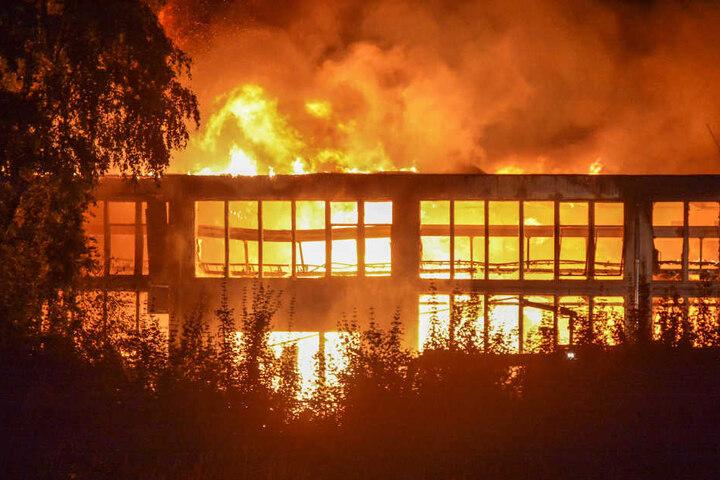 Die Flammen züngelten teilweise bis zu 30 Meter hoch.