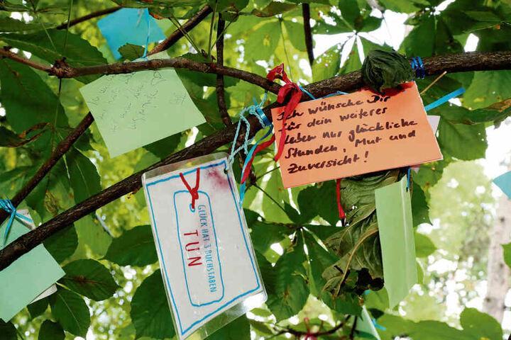Ein Baum voller Wünsche und Geschichten. Manchmal schreiben Kinder auf, was sie nicht über die Lippen bringen.