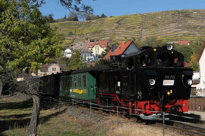 Die Lößnitzgrundbahn.