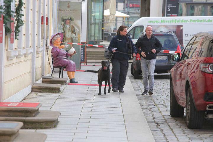 Auch Spürhunde kommen zum Einsatz.