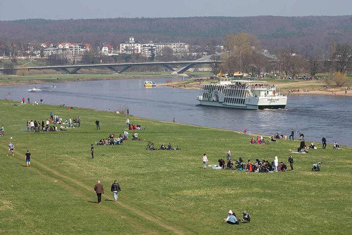 Liegewiese mit Aussicht: An den Elbwiesen tankten die Dresdner Sonne und schauten den Dampfschiffen auf dem Fluss nach.