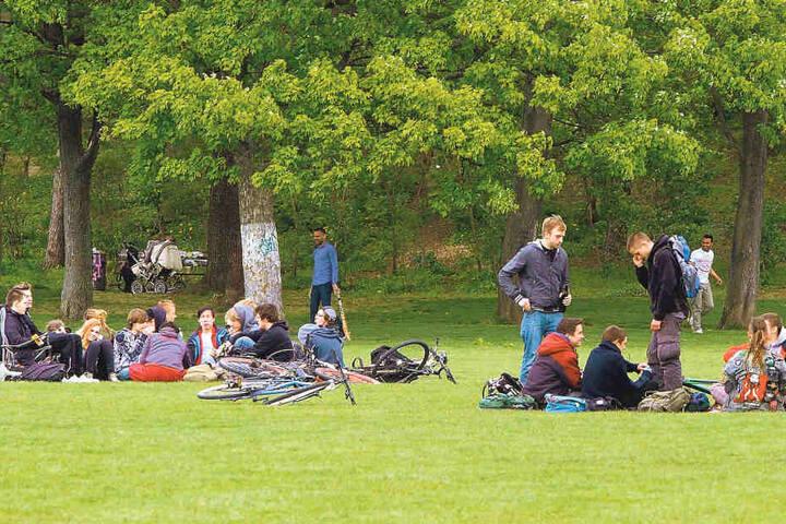Wird, wie hier im Alaunpark, nicht nur rumgelungert, sondern auch laut  gepöbelt, greift die Besondere Einsatzgruppe ein.