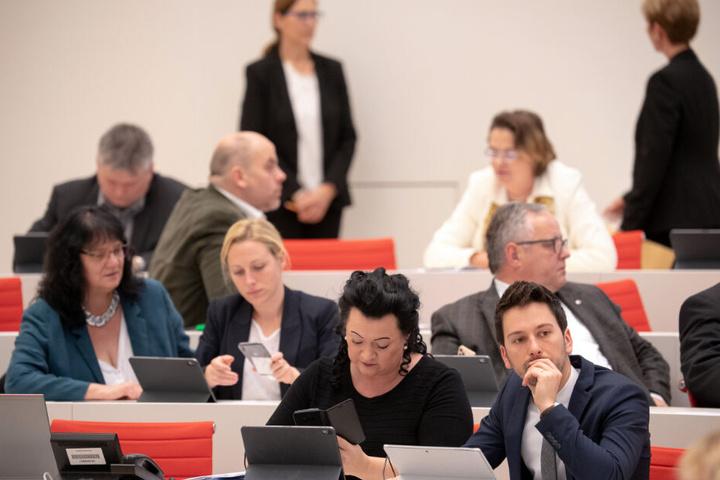 Abgeordnete der AfD-Fraktion sitzen während einer Abstimmung im Plenarsaal im Landtag.