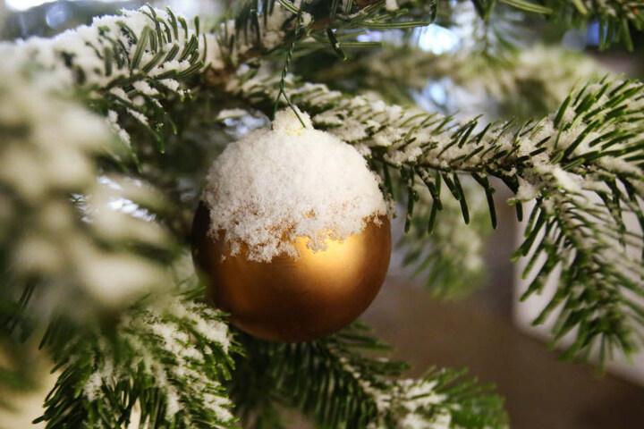 In die verschiedensten Winterwelten wird man in Eisenberg entführt.
