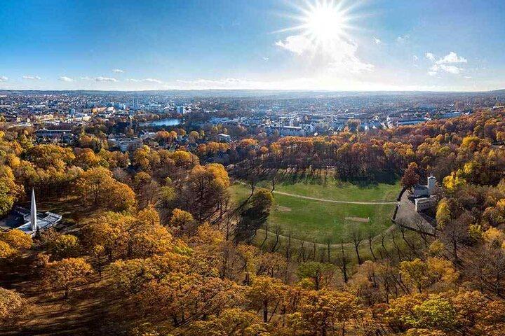 Der Küchwald von oben: Das 93,7 Hektar große Areal soll eine millionenschwere Kur bekommen.