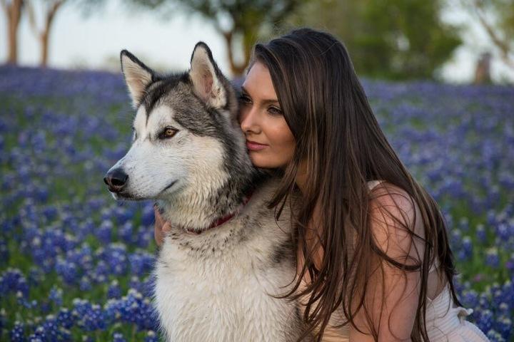 Hunde geben viele Signale, mit denen sie ihre Zuneigung zum Ausdruck bringen möchten.