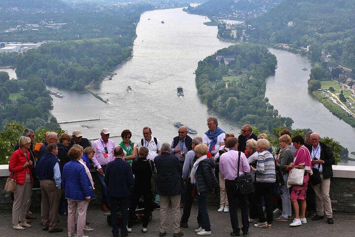 Blick vom Drachenfels über den Rhein.