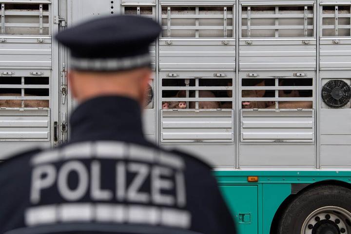 Aufmerksame Zeugen hatten den Transporter der Polizei gemeldet. (Symbolbild)