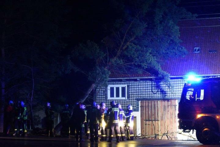 Ein großer Baum fiel auf ein Haus in Oderwitz.