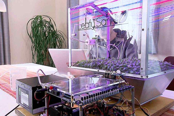 Mit Hilfe von verschiedenen Sensoren werden etwa Licht und Temperatur erfasst. Seine Erfindung stellt der Schüler Dienstagabend im MDR vor.