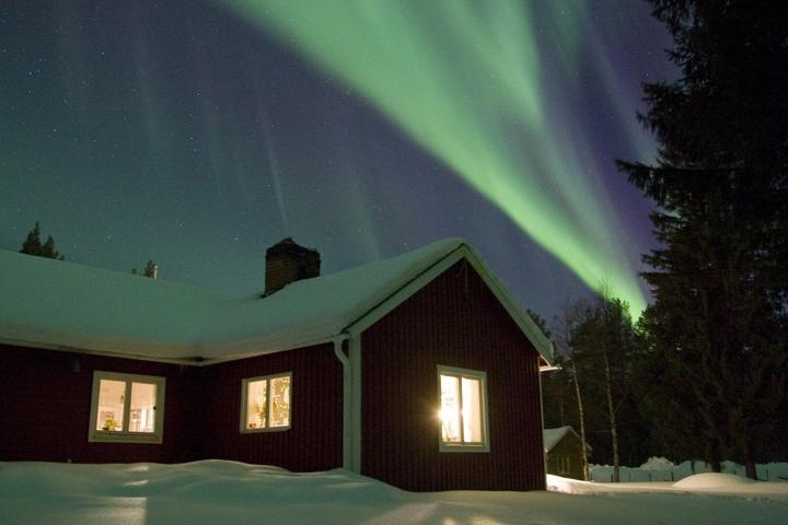 Nordlichter begeistern Uta auch noch nach 15 Jahren Leben in Finnland.