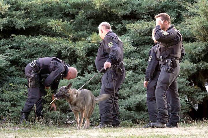 Auch Spürhunde waren bei der Razzia im Einsatz.