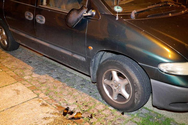 Die Frau trat an 13 Autos die Außenspiegel ab.