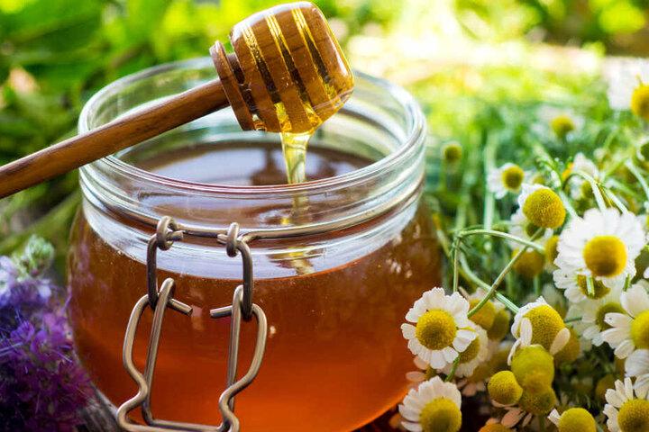 Honig ist nicht nur als Nahrungsmittel, sondern auch als medizinischer Helfer beliebt.