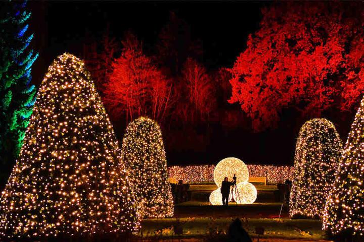 """Stimmungsvoll beleuchtet ist der Botanische Garten zu Eröffnung des """"Christmas Garden"""" im November 2016."""