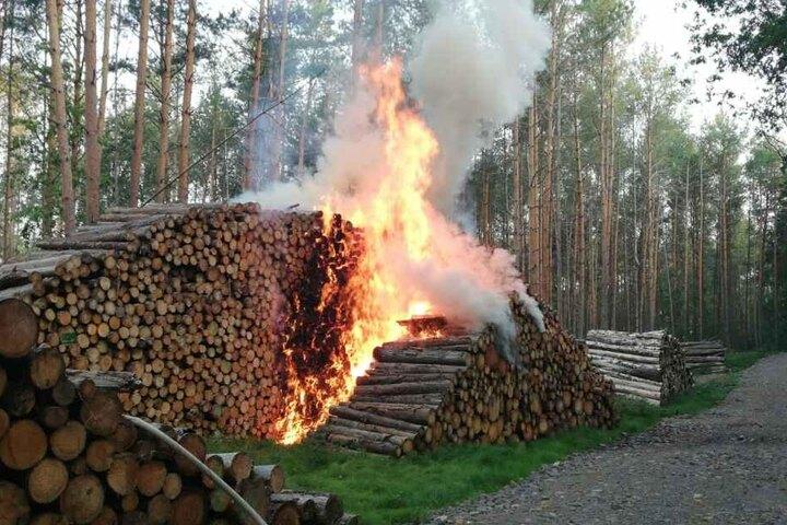 Wahrscheinlich ist es das Werk eines Feuerteufels.