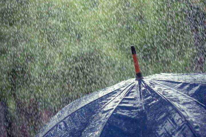 Ein Regenschirm wird am Wochenende zur Pflicht für jeden. (Symbolbild)