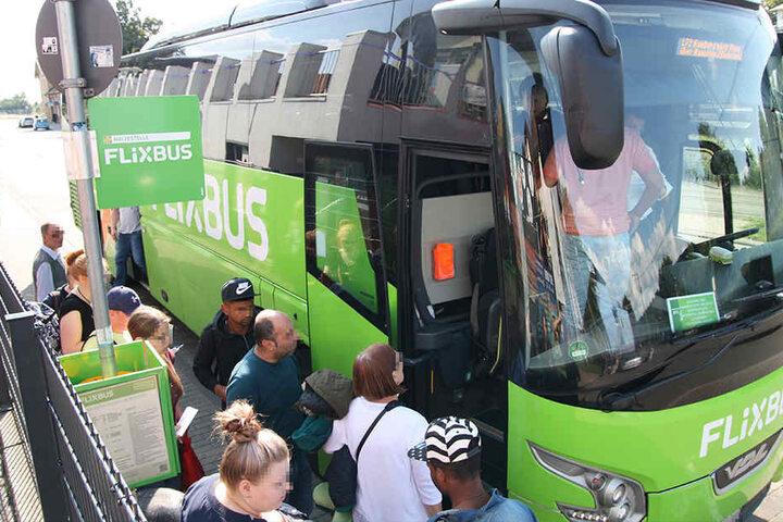 Mit einem der grünen Reisebusse fahren die Mädels so schnell nicht wieder.