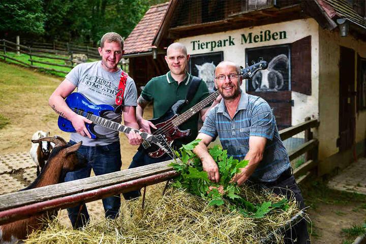 """Tierpark-Chef Heiko Drechsler (55,r.) freut sich über die Unterstützung der """"Biersturm""""-Musiker Simon Dobrzewski (31) und Janik Zinßmeister (25, v.l.)."""