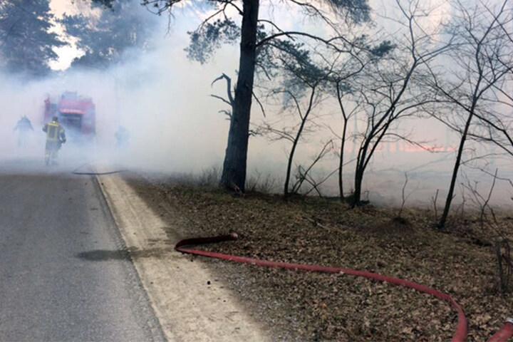 Die Feuerwehr kämpfte mit 150 Mann gegen die Flammen.