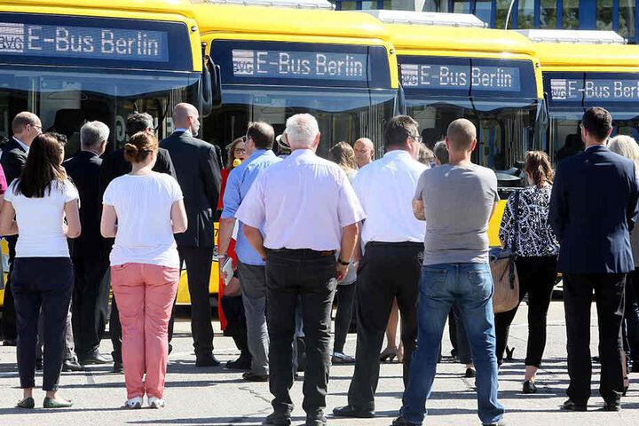 Die vier Elektrobusse vom Typ Solaris Urbino 12 electric werden auf der E-Buslinie 204 eingesetzt. Dabei soll es aber in Zukunft nicht bleiben.