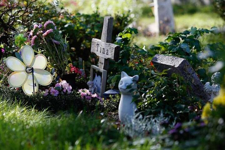 Eine Grabstelle auf dem Tierfriedhof in Berlin.